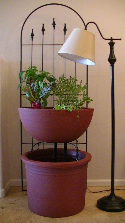 3 5 plant mini aquaponics garden kit aquaponics for Indoor gardening system