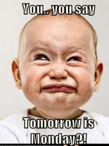 Funny Tomorrow Is Monday Meme : Tomorrow is monday quotes quotesgram