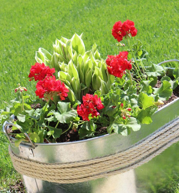 Unique Planter Idea Inexpensive Too