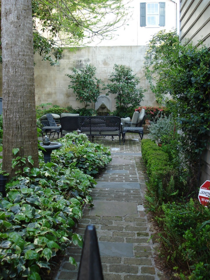 Photos Of Charleston Gardens Rose And Thistle Behind The Gates Of Charleston Outdoor Ideas