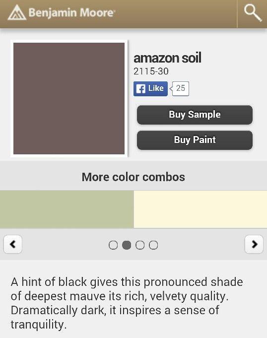 Benjamin Moore paint colors. Amazon Soil Mauve.