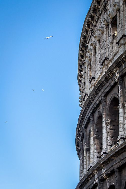 who found the city of rome - photo#19