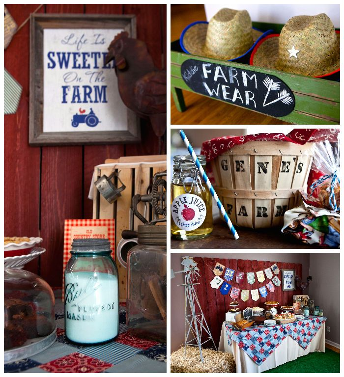 Vintage Barnyard birthday bash