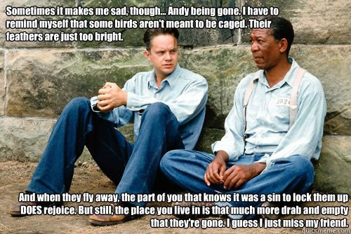 The Shawshank redemption film review: - GCSE English - Marked by ...