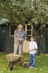 How to turn a shed into a cottage - Turning a shed into a cabin ...