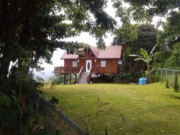 Little Cabin On Stilts In Puerto Rico Houses Pinterest