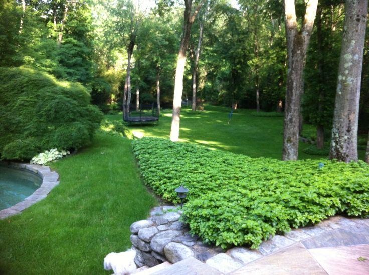 Most Beautiful Backyard In The Garden Pinterest
