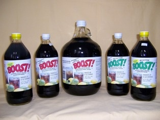 THE BOOST! COMPANY