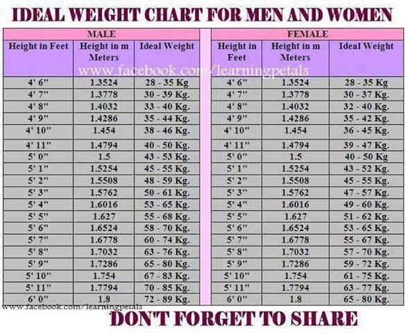 Average weight and height for adults chart