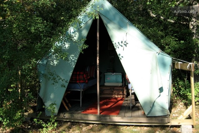 Pin by burgess brown on our new old farmhouse pinterest for Canvas platform tents