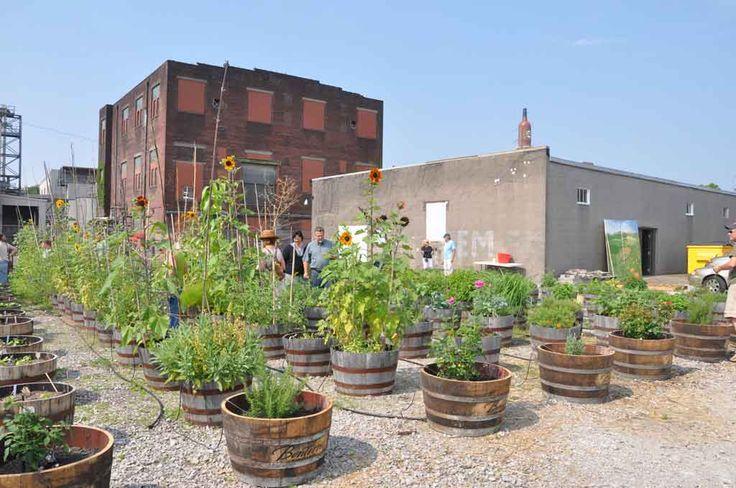 rooftop garden urban gardening pinterest. Black Bedroom Furniture Sets. Home Design Ideas