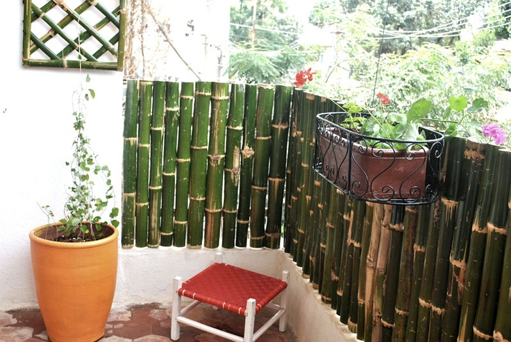bamboo fencing for balcony bamboo fencing pinterest