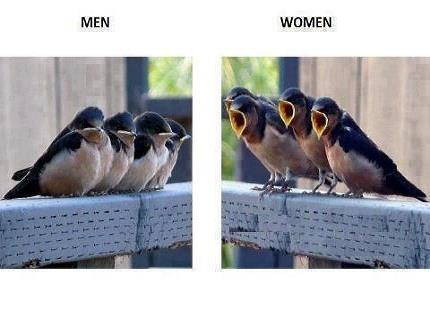 Men vs Women Differences Jokes