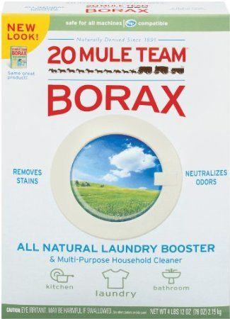 The Borax Conspiracy Big Pharma's Latest Ploy to Outlaw a Natural Cure ...