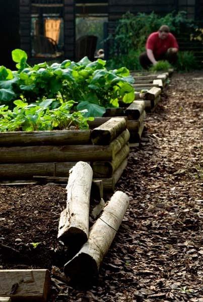Log Style Raised Beds Gardening Pinterest