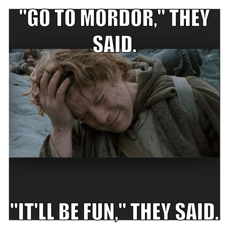 Lord of the Rings meme. #samwisegamgee