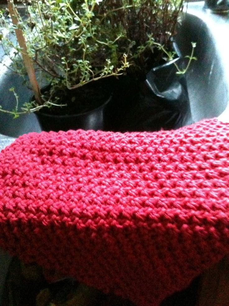 Knitted Moss Stitch Dishcloth Pattern : Pin by Christine Walraven on Knitting Pinterest