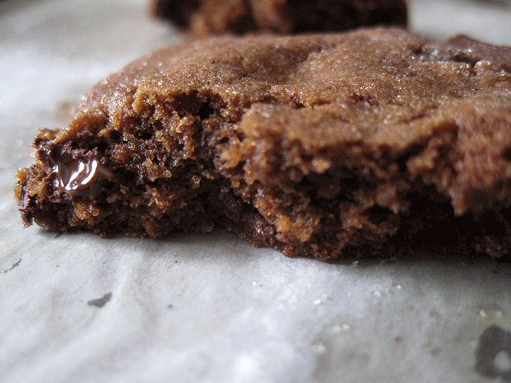 Chewy Chocolate Gingerbread Cookies | High Altitude Baking | Pinterest