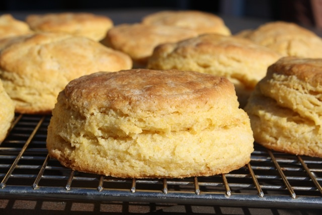 Forks Knives & Spades: Cornmeal Biscuits | IF I LIKED BAKING... | Pin ...