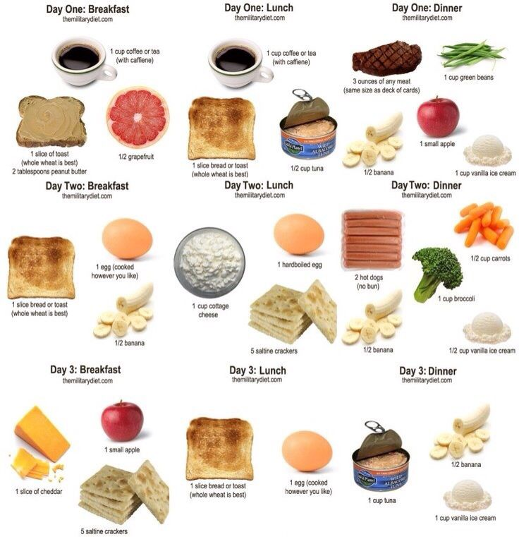 This is a photo of Refreshing Military Diet Printable