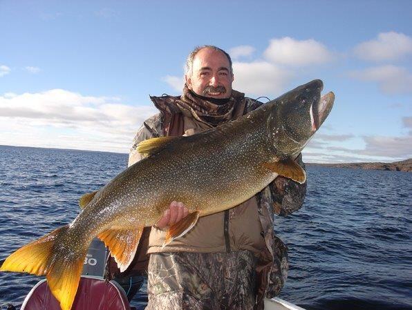trout fishing great bear lake deline fishing pinterest