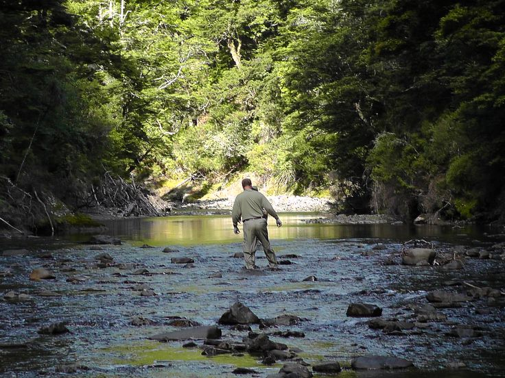 Pin by the new zealand fly fishing company on wilderness for New zealand fly fishing