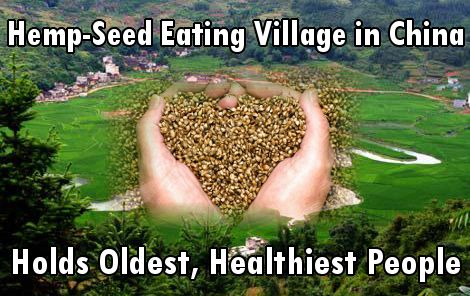 Hemp Seed-Eating Village in China Holds Oldest, Healthiest People in the World