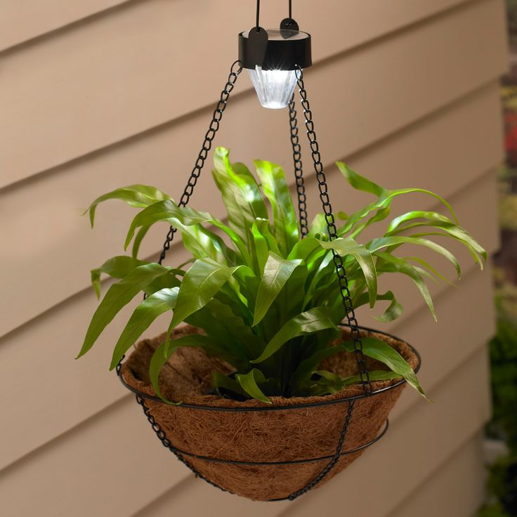 Hanging Light With Planter: Hanging Basket Planter With Solar Light