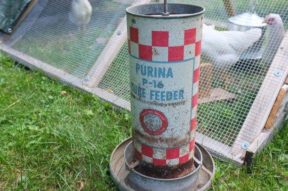Pin by brandy roberts on chicken coop cuteness pinterest for Old chicken feeder ideas