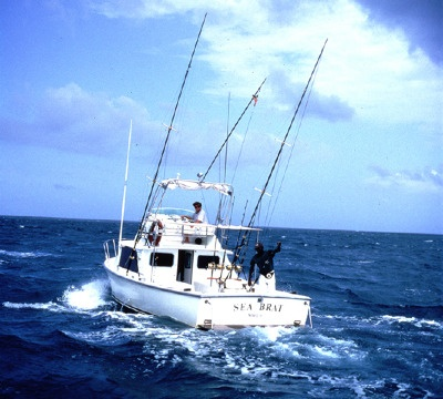 Deep sea fishing in gulf of mexico been there done that for Deep sea fishing mexico