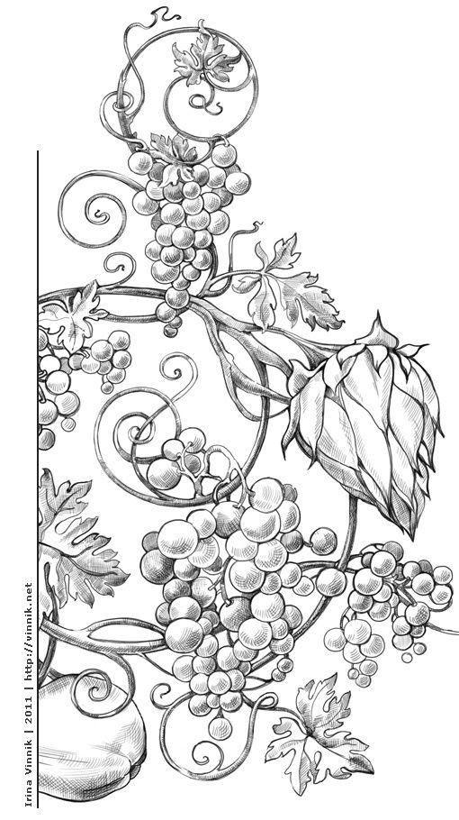 Le coin des enfants raisins for Raisins coloring page