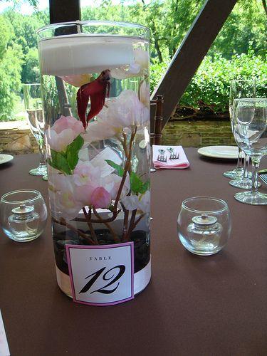 Wedding Bettas : ... wedding centerpeices Beta+fish+wedding+centerpieces A girl can