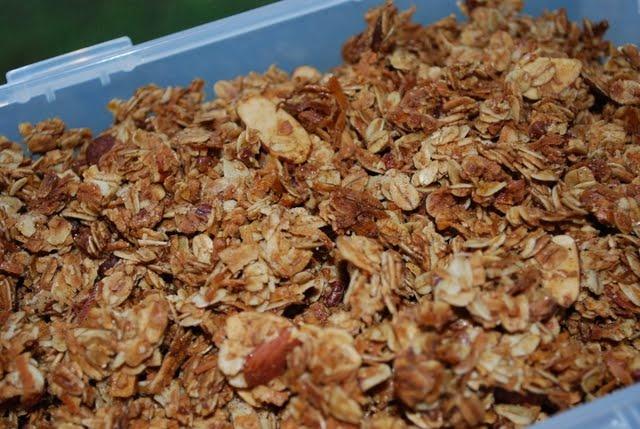 Coconut Almond Granola | Appetizers | Pinterest