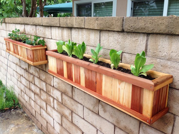 Empty Space In Backyard : Use empty wall space in the backyard for herb planters