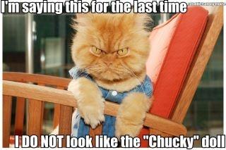 I DO NOT look like the Chucky doll
