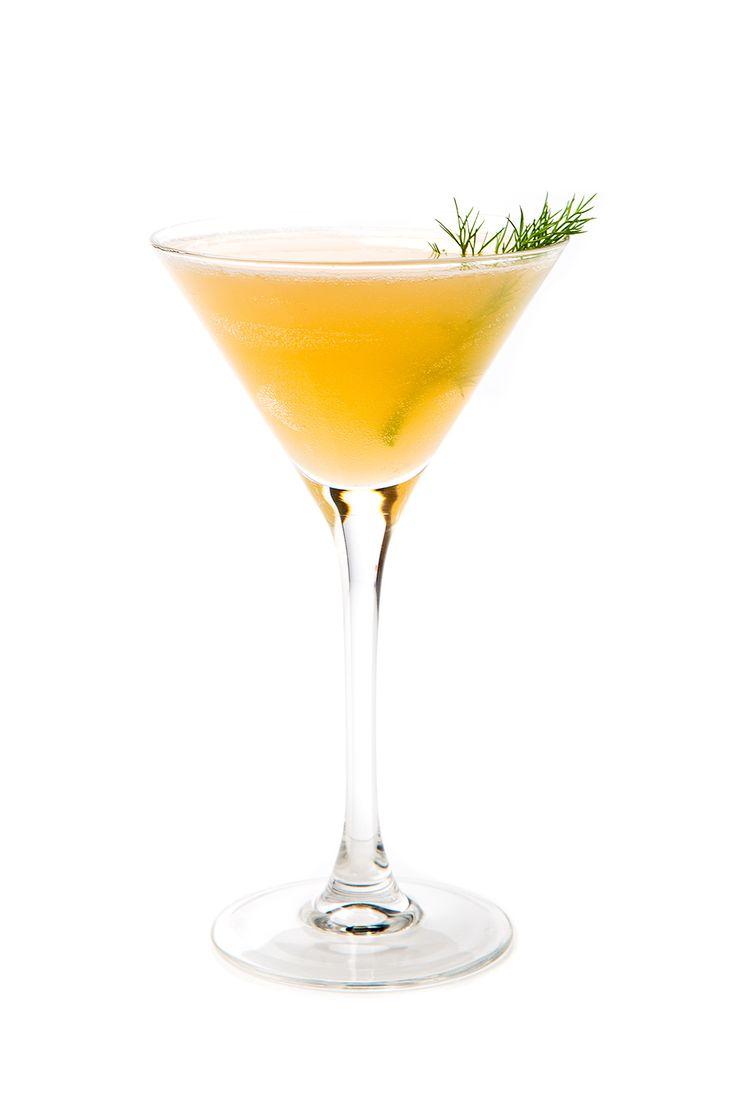Fennel Syrup Recipes — Dishmaps
