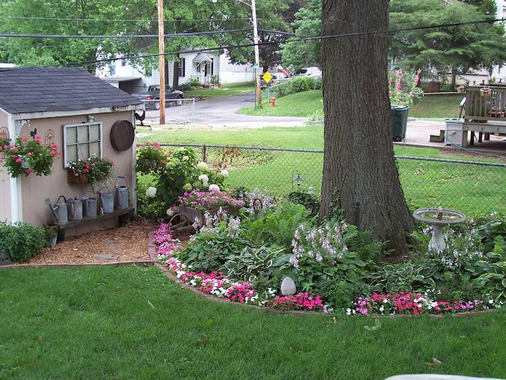 Landscaping Ideas Around Oak Trees : Ring around the tree with flowers future garden ideas