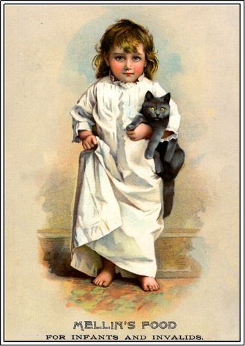 Beautiful Child Gray Cat Victorian Trade Cards Poster Art Print Advertisement | eBay