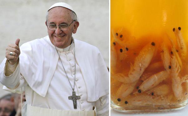 """14 - Las propiedades del krill, el secreto de la vitalidad del Papa Francisco - El Papa Francisco tiene 76 años y una vitalidad que resulta envidiable y de la cual hace gala en cada una de sus apariciones públicas. ¿Cuál es su secreto? Según fuentes del Vaticano, el Sumo Pontífice ingiere durante el desayuno un suplemento de aceite de krill, crustáceo al que le debería su energía, según informa el diario argentino """"Clarín"""". Aquí te contamos cuáles son las propiedades de este alimento."""