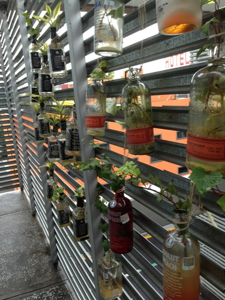 Urban Backyard Ideas : urban garden ideas  garden  Pinterest