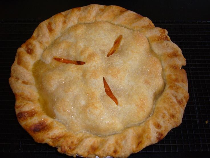 Apricot Pie   Pies, Pie Pops, Cobblers & Tarts   Pinterest