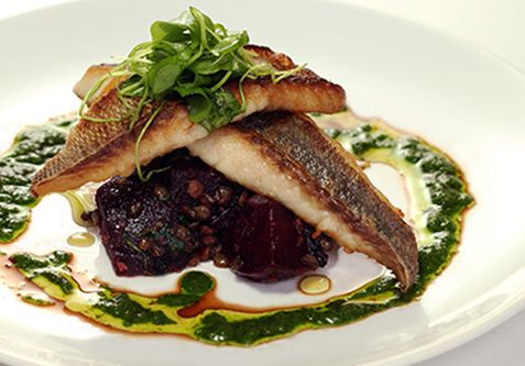 White Fish, French Lentils Roasted Beets, & Salsa Verde Recipe | Feed ...
