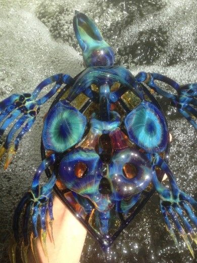 Freshwater turtle Glass Rivers by Buck Pinterest