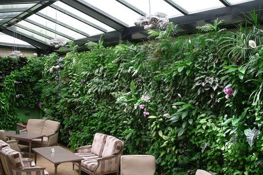 ambiance jardin d 39 hiver p tios e jardins de inverno. Black Bedroom Furniture Sets. Home Design Ideas
