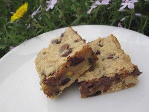 Chocolate Chip Blondies With Pistachios & Cranberries Recipe [vegan]