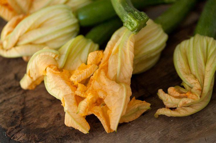 Squash Blossom And Pancetta Pizza Recipe — Dishmaps