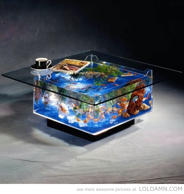 cool coffee table aquarium cool stuffs pinterest