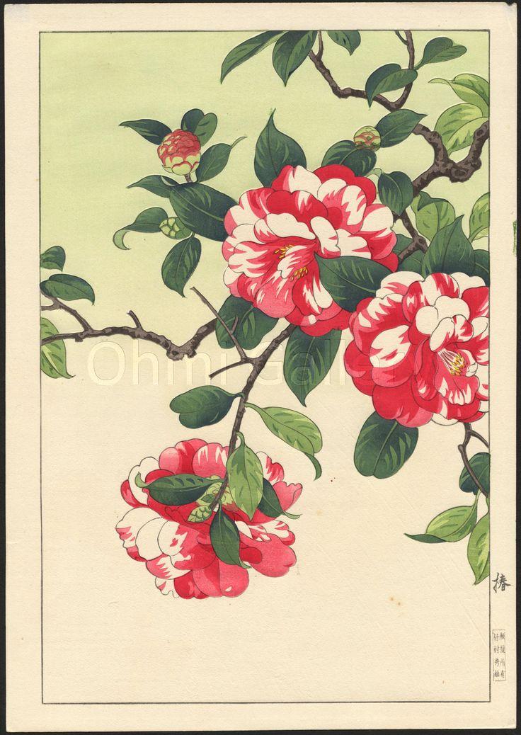 Nishimura_Hodo-Camellia-01-02-19-2008-9181-x2000.jpg (1417×2000)