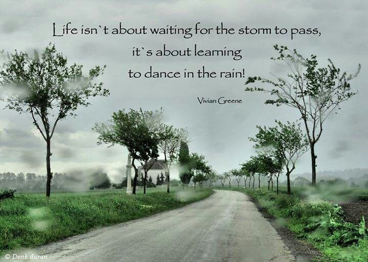 Vivian Greene Quote  on quotes