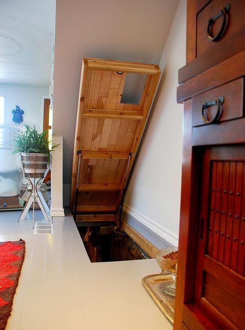 cat door and hatch door to kitty room in the basement this woul